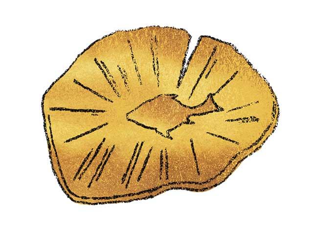焼鮒(やきふな)円盤